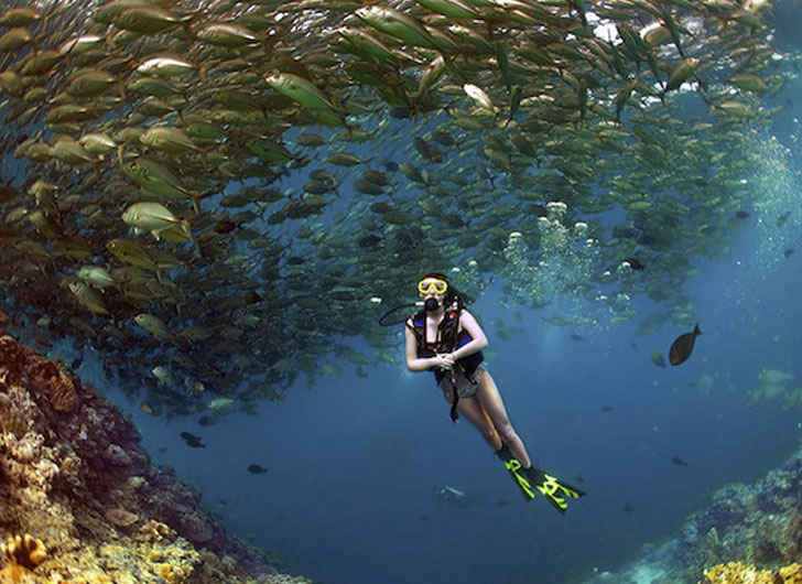 Best Scuba Diving Spots for Your Next Underwater Adventure