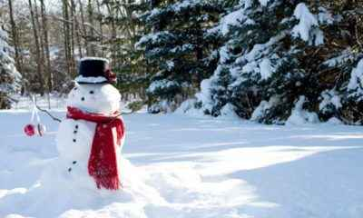 Dreaming of a White Christmas?  Pack Your Bags and Head Here!