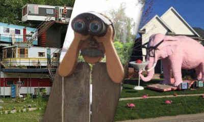 The Worst Neighbors In The World