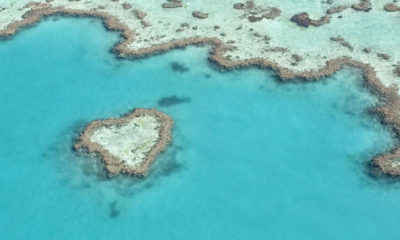 Australia to Invest Millions in Great Barrier Reef Restoration