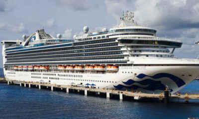 Cruise Ship Returns to Florida With Hundreds of Sickened Passengers