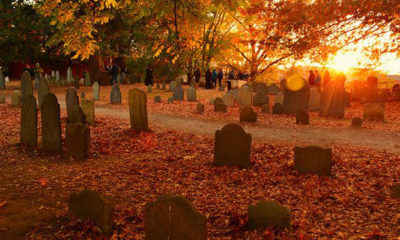 Mayor Urges Visitors to Steer Clear of Salem This Halloween