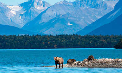 Alaska Will Offer COVID Vaccines to Tourists Beginning June 1